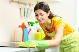 The Top 100 Desirable Qualities of a Maid Service Salt Lake City